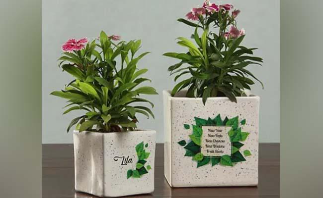 Customised Planters