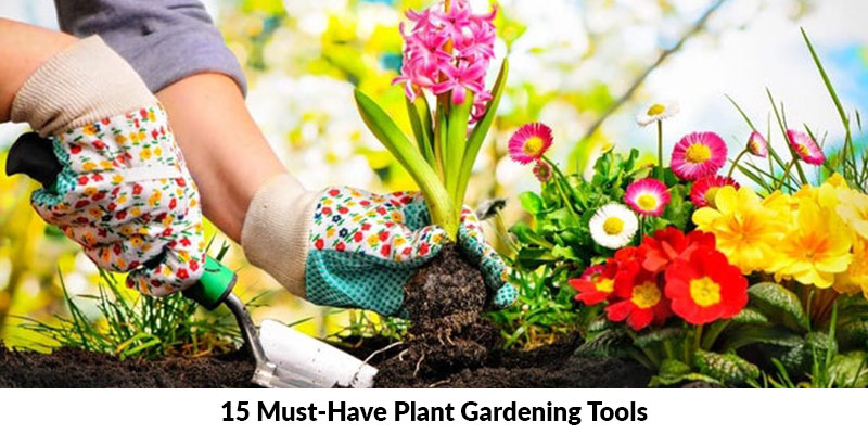 Must Have Plant Gardening Tools