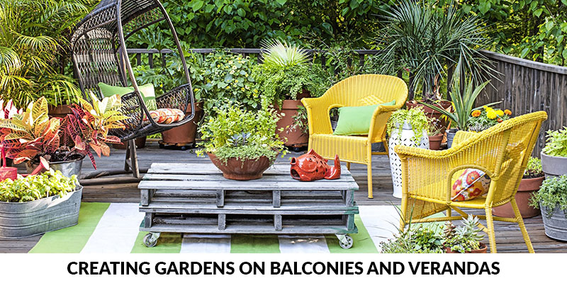 Creating Gardens on Balconies and Verandas