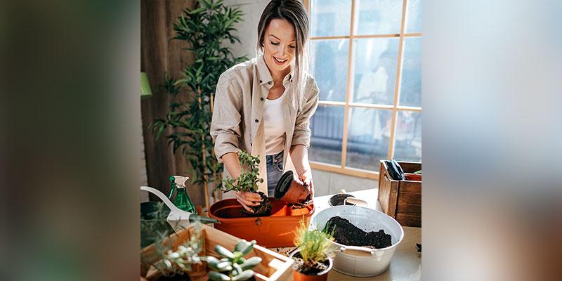 Reasons to Grow Microgreens at Home