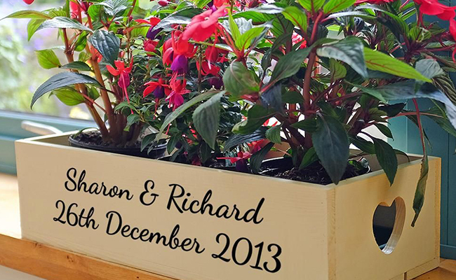 Personalised Indoor Plants