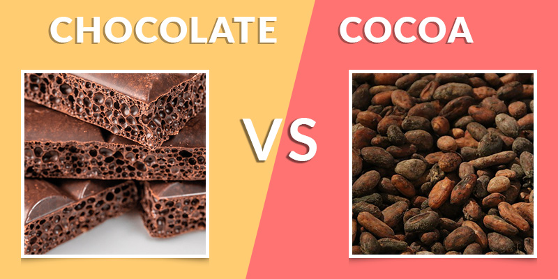 Difference Between Chocolate and Cocoa