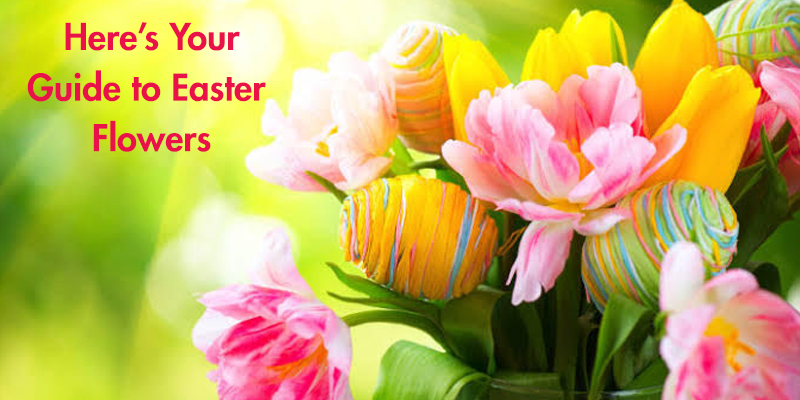 Guide to Easter Flowers