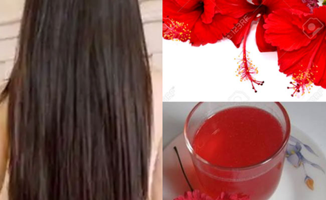 Hibiscus Flower Benefits for Hair and Skin