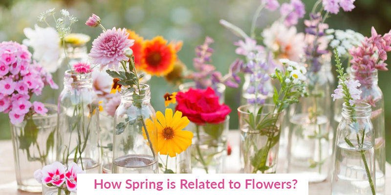 How Spring is Related to Flowers