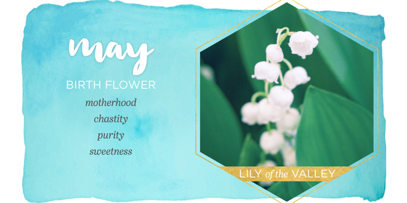 Know All About May Birth Flower