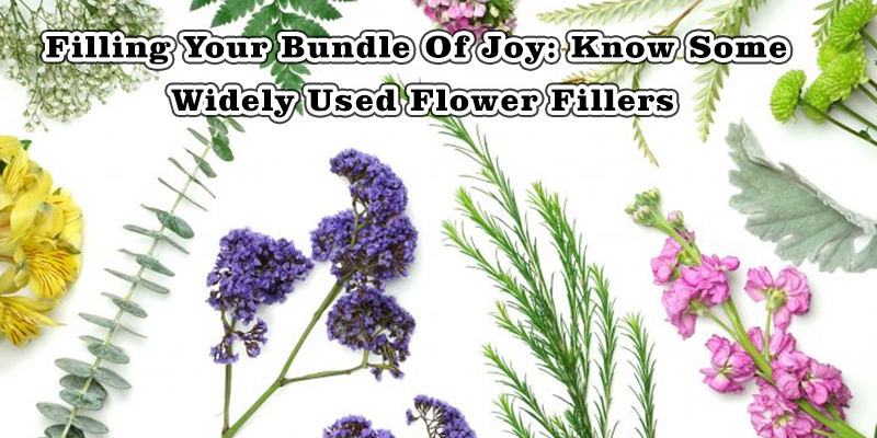 Know Some Widely Used Flower Fillers