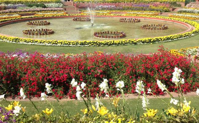 Mughal Garden Flower Show in Delhi