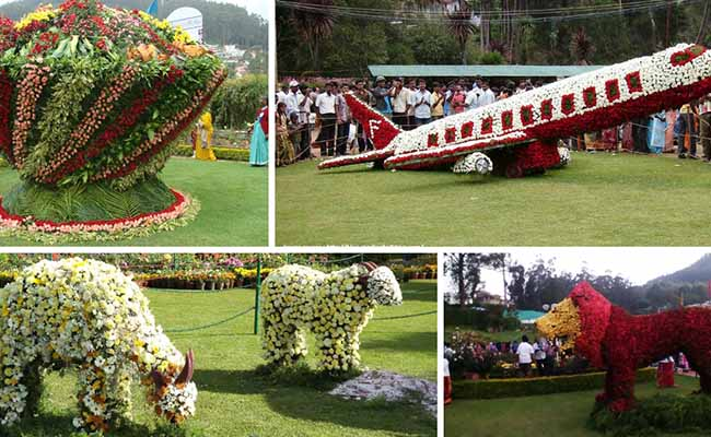 The Annual Ooty Flower Show