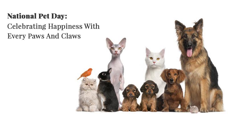 National Pet Day Celebration