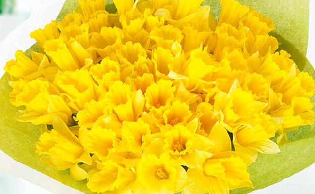 March Birthday Flowers