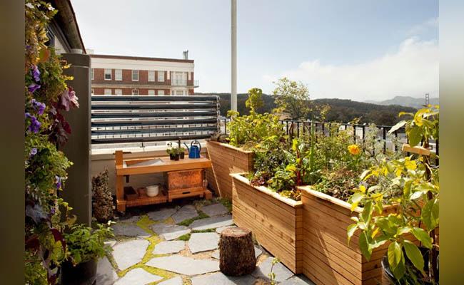 Garden on Rooftop
