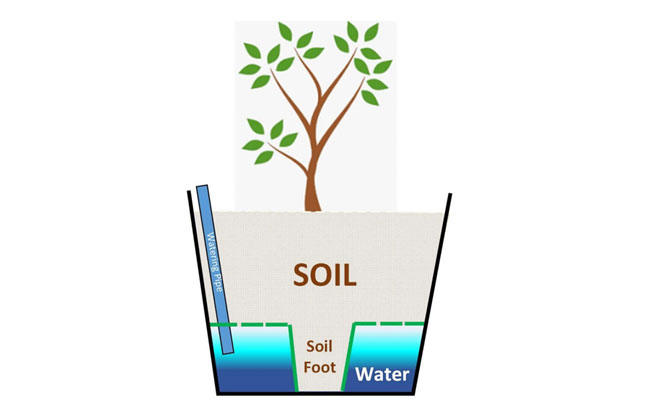 How do Self Watering Plant Pots Work
