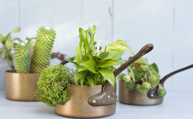 Kitchen Utensils Planter