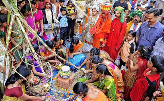a festival celebration of makar sankranti