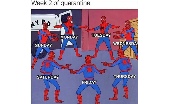 Tell Me Which Day it is