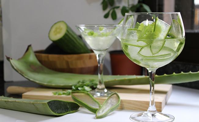 Aloe Vera for Stomach