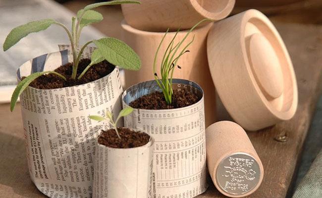 Choose Plastic-Free Gardening Tools
