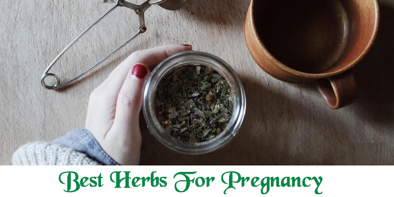 Effects of Herbs on Expecting Mothers
