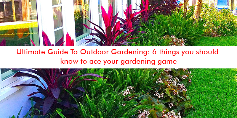 Things to Know for Gardening