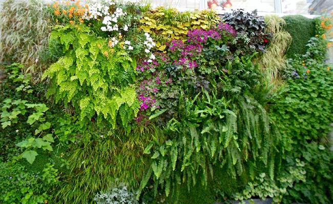 Turn Garden into Flower Garden