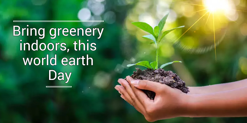 Bring Greenery This World Earth Day