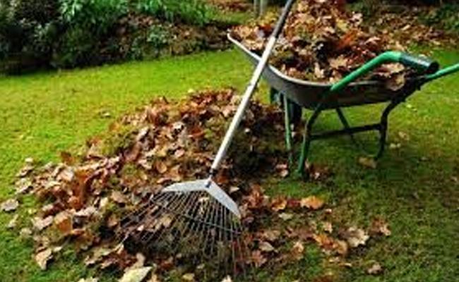Clean The Garden