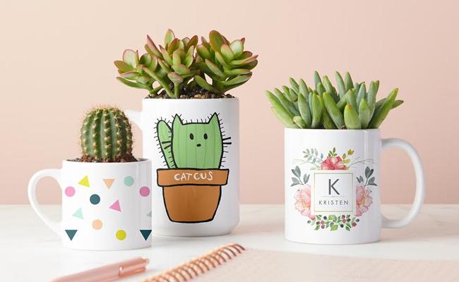 Mug Planters