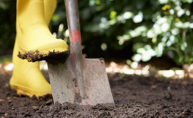 Shovel for Plants Caring