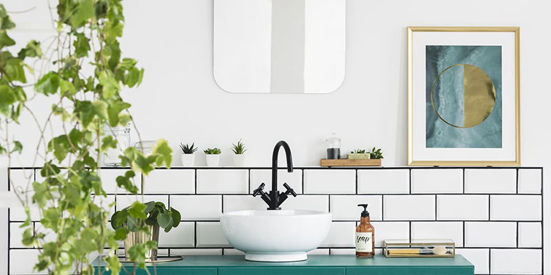 Suitable Plants for Bathroom
