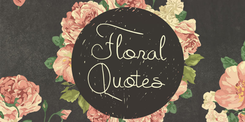 Quotes About Flowers to Brighten Your Day
