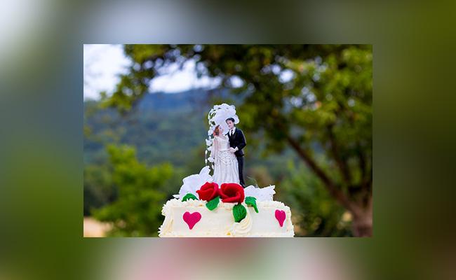 Couple's Hug Cake