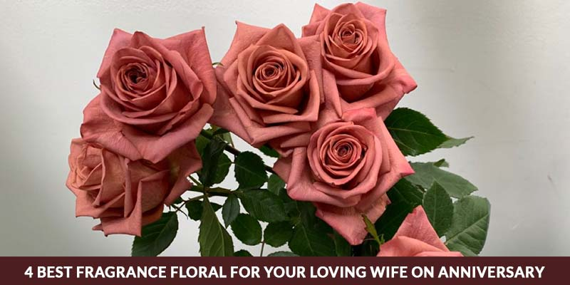 4 Best Fragrance floral for your loving wife on anniversary