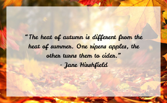 Fall Season Quote 1