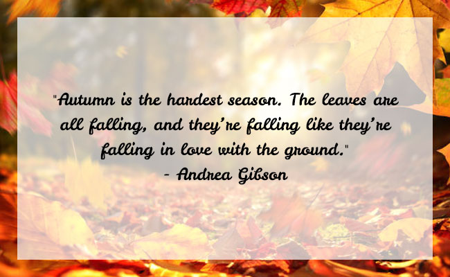 Fall Season Quote 13