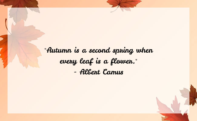 Fall Season Quote 15