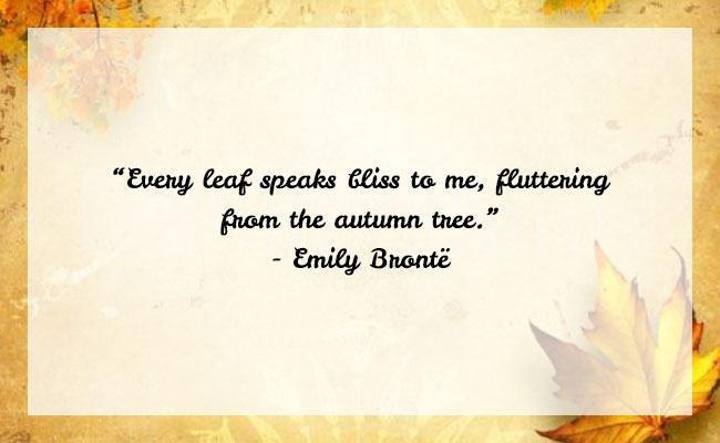 Fall Season Quote 16