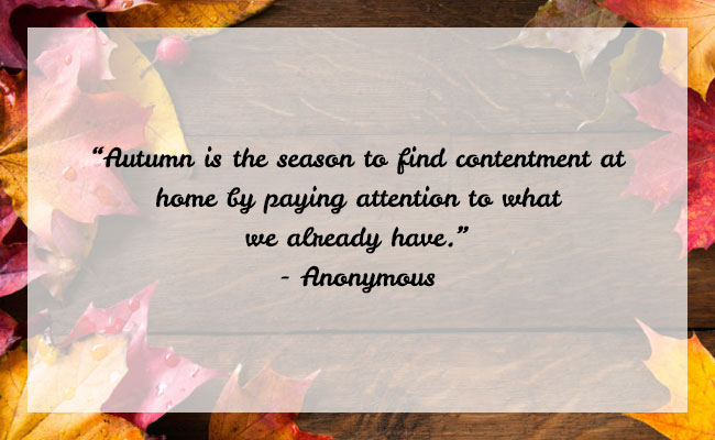 Fall Season Quote 22