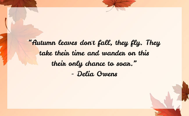 Fall Season Quote 3