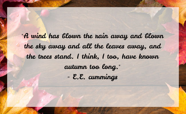 Fall Season Quote 6