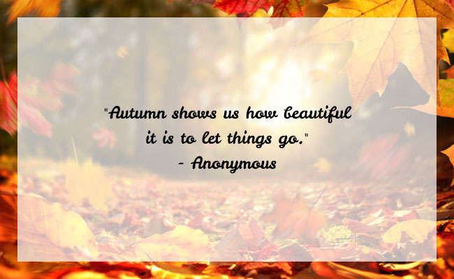 Fall Season Quote 9