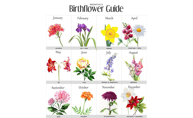 Birthday Month Flower