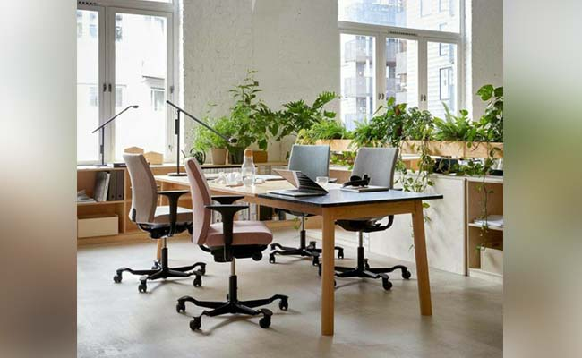 Fresh Ideas To Ensure That Your Office Looks Energetic
