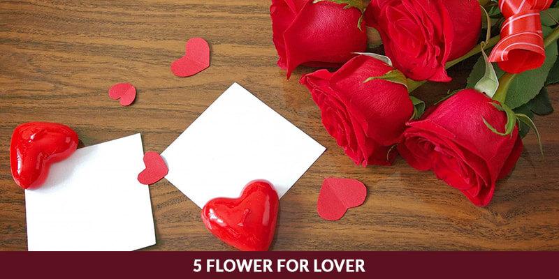 5 Flower for Lover