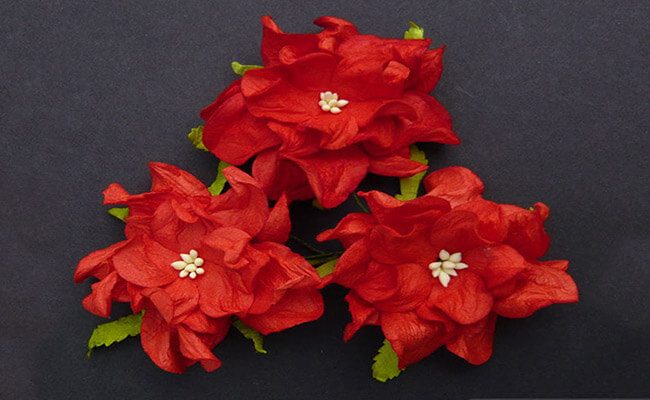 Gardenias Represents Love