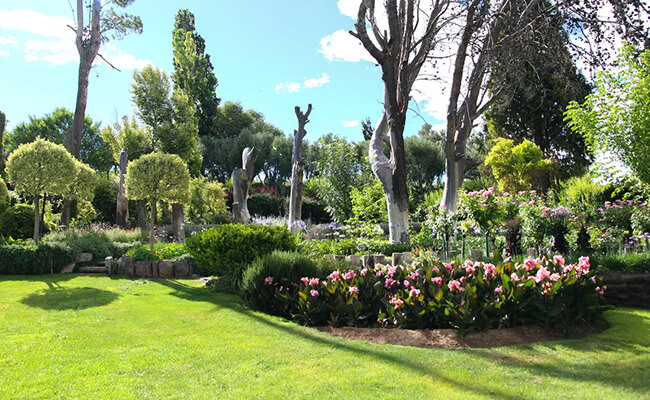 Pinjore botanical gardens in India