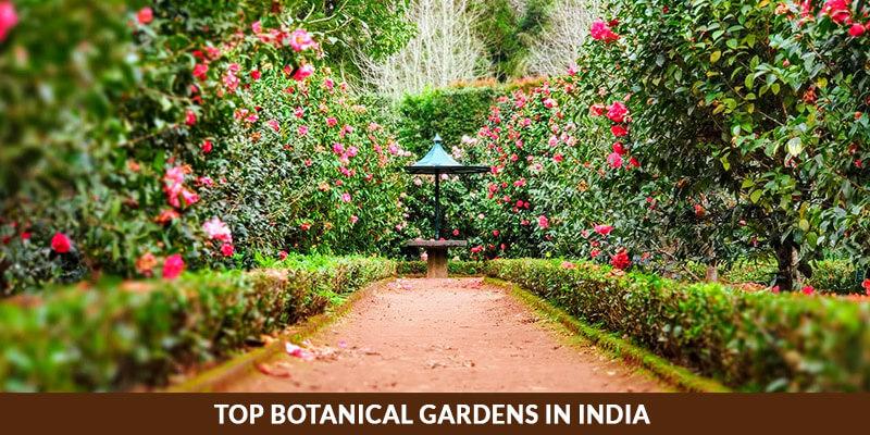 Top botanical gardens in India