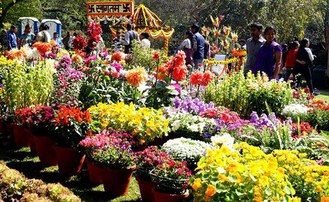 Find All Details on Flower Show in Delhi