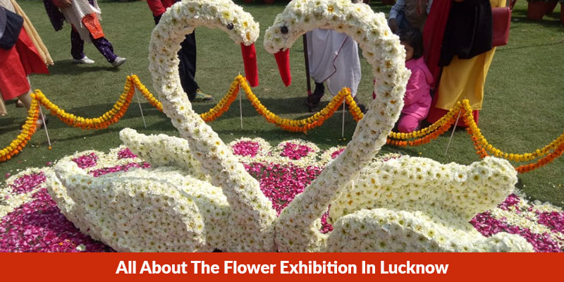 All About The Flower Exhibition In Lucknow