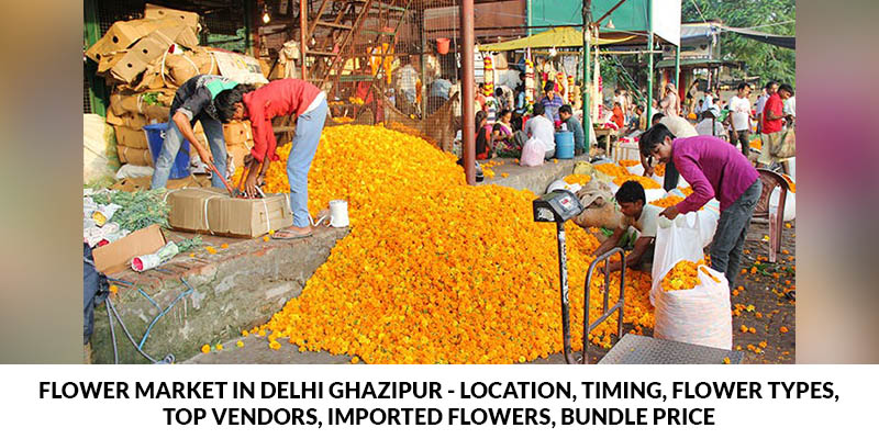 Flower Market in Delhi Ghazipur